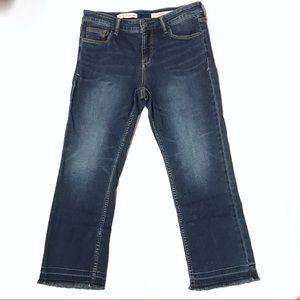 Anthropologie Pilco Script Raw Hem Sz 29 Jeans